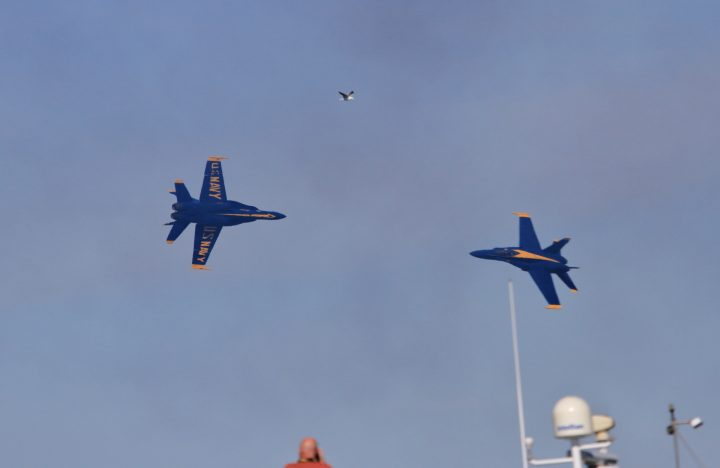 feeltweek2016-navy-blueangels-005